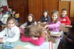 uspeh_2012-004-8