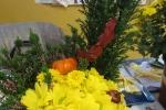 zlatna_esen_2014-25